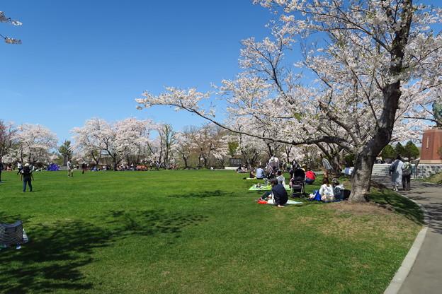 戸田記念墓地公園その25