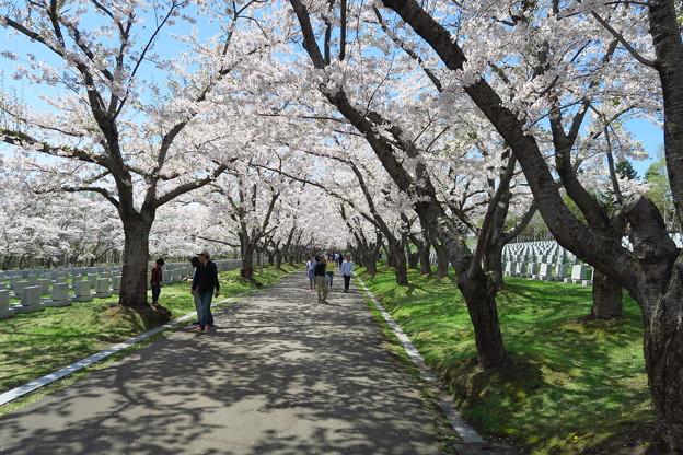 戸田記念墓地公園その29