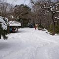Photos: 高尾山山頂下