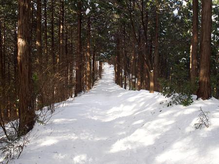 景信山への道