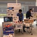 Photos: 名古屋空港『空の日』フェスタ2018 ダイヤモンドエアサービスPRブースIMG_1272