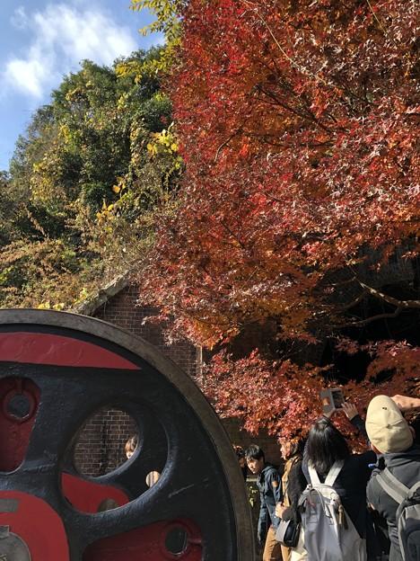 愛岐トンネル群 秋の特別公開 鉄道遺構 C-57動輪と紅葉 IMG_1527