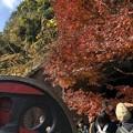 Photos: 愛岐トンネル群 秋の特別公開 鉄道遺構 C-57動輪と紅葉 IMG_1527