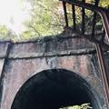 Photos: 愛岐トンネル 秋の特別公開 鉄道遺構IMG_E1454