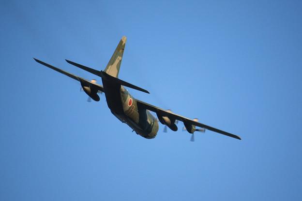 航空自衛隊 C-130H 05-1084 IMG_8967_2