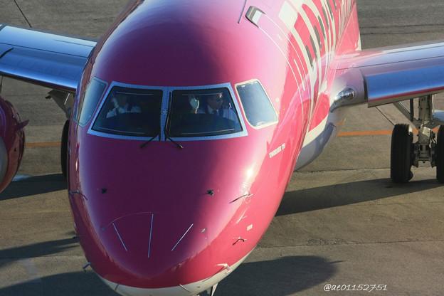 FDA フジドリームエアラインズ ERJ-175 JA15FJ ローズピンク 県営名古屋空港にて IMG_8153_3