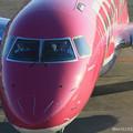 Photos: FDA フジドリームエアラインズ ERJ-175 JA15FJ ローズピンク 県営名古屋空港にて IMG_8153_3