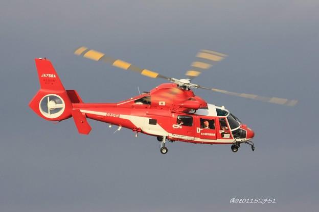 名古屋市消防航空隊 ユーロコプター AS365/565 ドーファン2 JA758A のぶなが IMG_6515_3