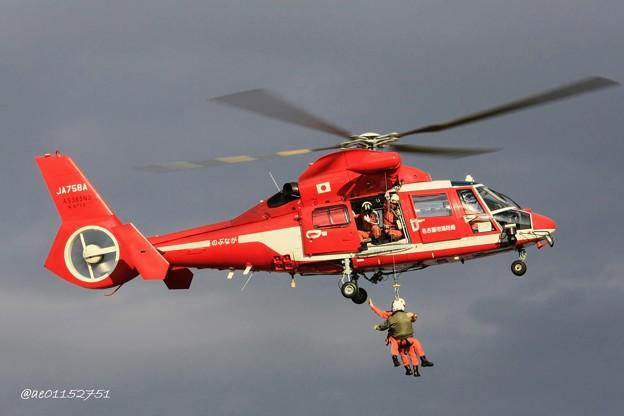 名古屋市消防航空隊 ユーロコプター AS365/565 ドーファン2 JA758A のぶなが IMG_6493_2_edited-1