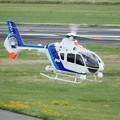 Photos: オールニッポンヘリコプター Eurocopter EC135T2 JA33NH IMG_9601_3