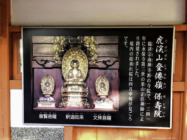 虎渓山永保寺 保寿院 IMG_6025-3