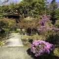 Photos: 虎渓山永保寺と名勝庭園 IMG_6042-3