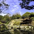 Photos: 虎渓山永保寺 国宝 観音堂と名勝庭園 IMG_6044-3