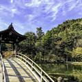 Photos: 虎渓山永保寺 国指定文化財 名勝庭園 IMG_6055-3