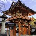 Photos: 虎渓山永保寺 保寿院 IMG_6069-3