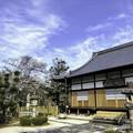 Photos: 虎渓山永保寺 桜 IMG_6065-3