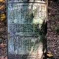 可児市 蘭丸ふる里の森 IMG_5966