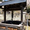 Photos: 美濃金山城跡@可児市 蘭丸ふる里の森 IMG_5997