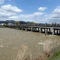 Photos: 増水渡月橋