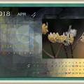 Photos: 4月始まり