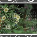 Photos: 2019年10月カレンダー