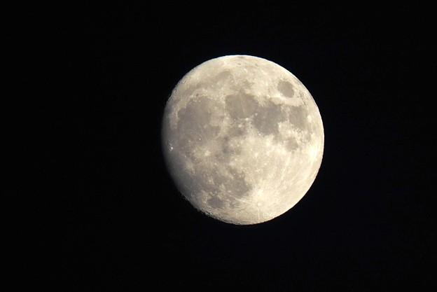Photos: 十三夜の名月