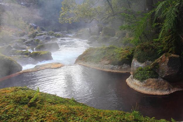 写真: 川沿いの温泉