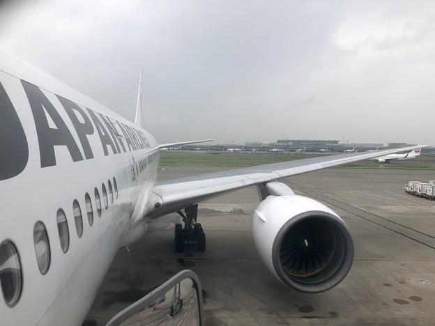 ジャパンの翼
