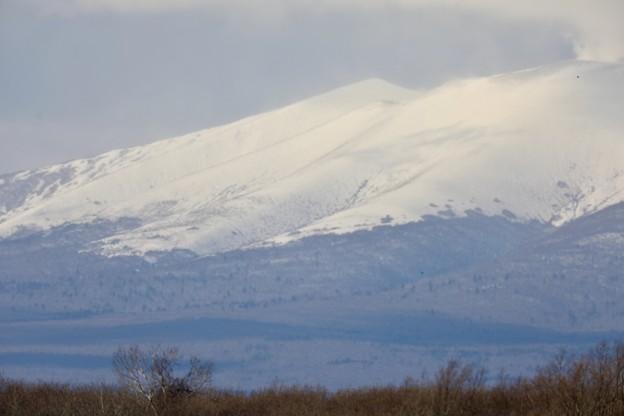 Photos: 活火山