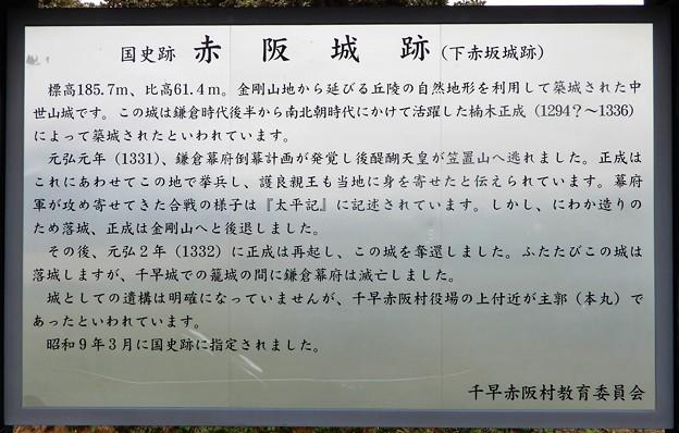 下赤坂城趾 (2)
