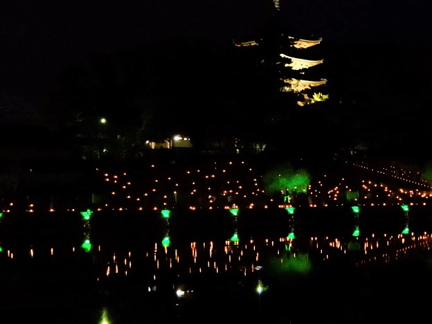 奈良燈花会 (3)・猿沢池