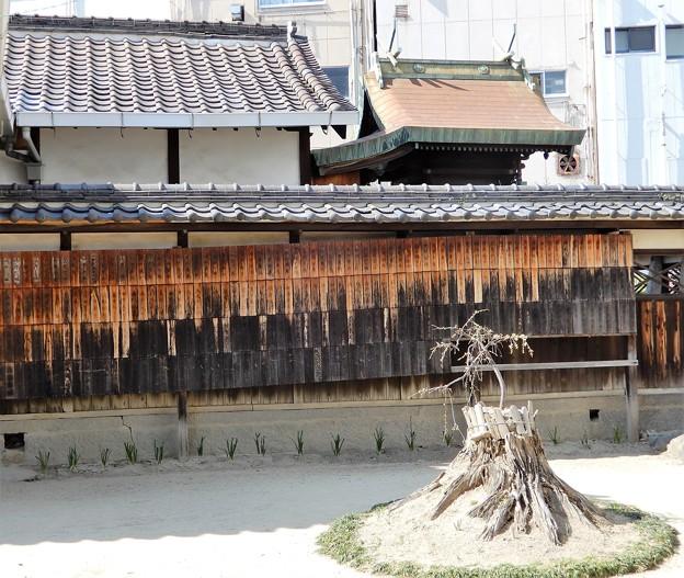 八尾神社 (4)