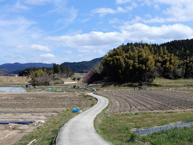 明日香村近隣公園への野道