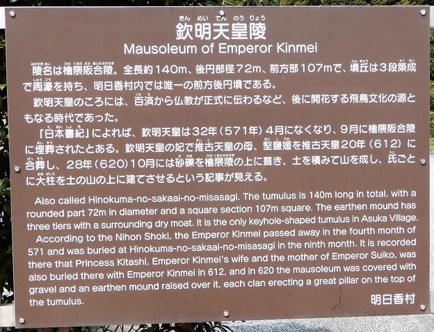 欽明天皇陵 (3)
