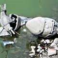 写真: 池に投棄されたモーターバイク (2)