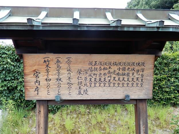 06深草北陵・十二帝陵 (1)