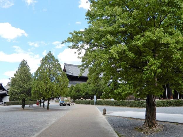 11東福寺 (1)