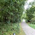 Photos: 梅田の里山 (1)