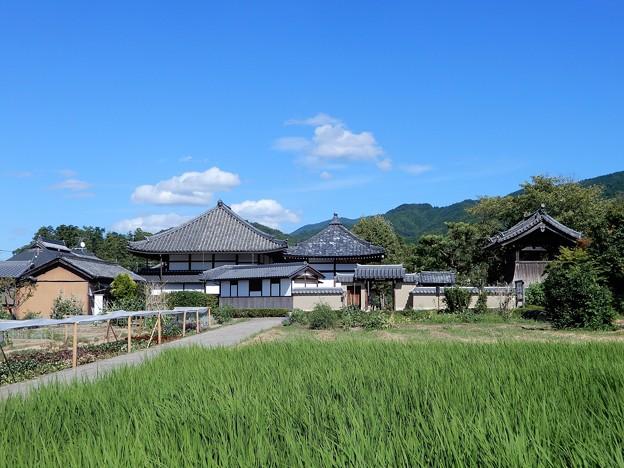 20飛鳥寺