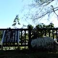写真: 27剣池の万葉歌碑 (1)