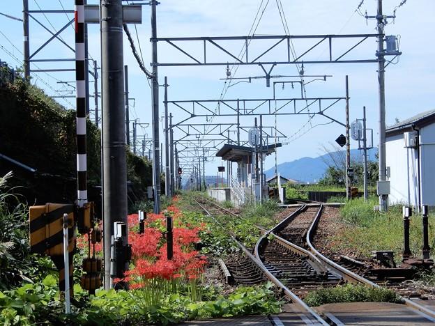 05近江鉄道・尼子駅、左側は東海道新幹線