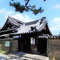 Photos: 10海会寺(南宗寺) (1)