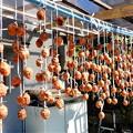 吊るし柿 (1)