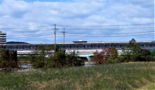旭川橋梁 (2)