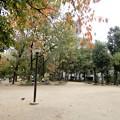 写真: 阿波座南公園