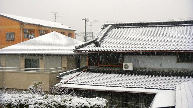2011.2.14.雪の日
