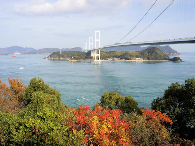 来島海峡大橋(今治側の糸山公園から)