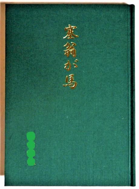 K氏自叙伝「塞翁が馬」 (1)