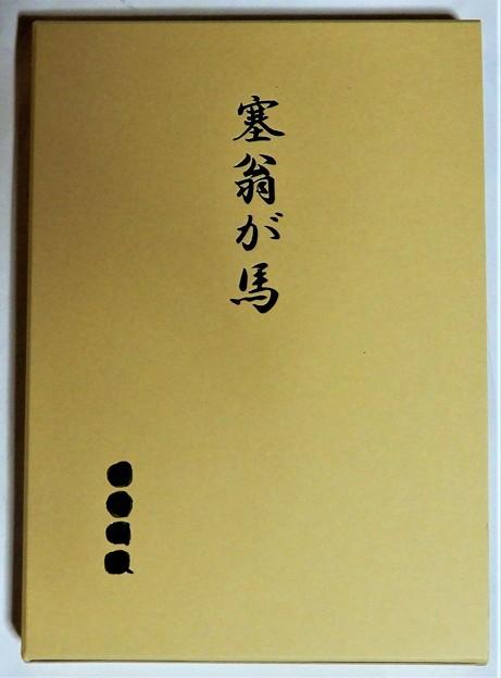 K氏自叙伝「塞翁が馬」 (2)