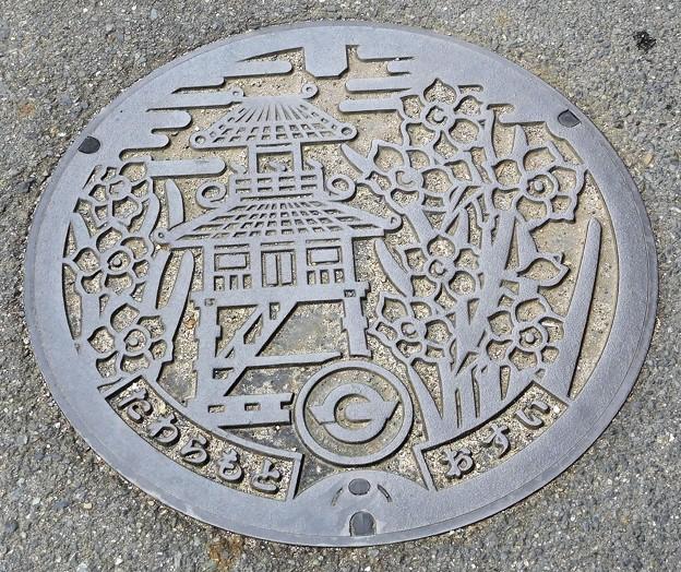 636-0300田原本町のマンホール